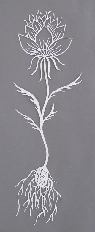 Flowerstudy_papercut