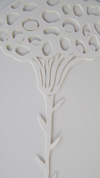 Flowerpodstudy
