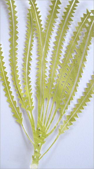 Paper cut_leaves